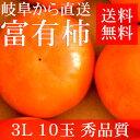 【お歳暮ギフト】[送料無料]岐阜産 富有柿 3L×10玉 贈答用 秀品質【楽ギフ_のし】