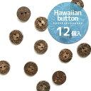 ボタン ハワイアンボタン ヤシの実 天然素材ボタン ナチュラルボタン やしの実 11.5mm( 12個入 ) | つくる楽しみ 天然素材ボタン