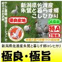 新米28年産新潟県佐渡産朱鷺と暮らす郷コシヒカリ(減農薬)1等米・特A米30kg玄米