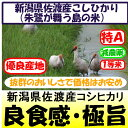 新潟県佐渡産コシヒカリ(朱鷺・トキが舞う島の米)(減農薬)28年産1等米・特A米30kg玄米