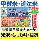 滋賀県甲賀産キヌヒカリ(減農薬)(近江米)28年産1等米 5kg