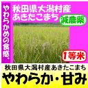 新米28年産秋田県大潟村あきたこまち(減農薬)1等米30kg玄米