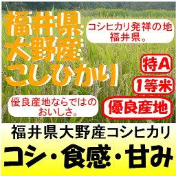 福井県大野産コシヒカリ28年産1等米・特A米30kg玄米