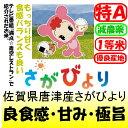 佐賀県唐津産さがびより(減農薬)28年産1等米・特A米5kg