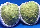 【特別希少品】甘い甘い森のアイスクリーム 宮崎産アテモヤ2個入り およそ750g