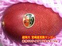 【限定商品】【お買得】『希少品』【超特大】宮崎産完熟マンゴー...