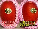 《大好評》[産直宮崎県]『太陽のタマゴ』宮崎産完熟マンゴー【赤秀】2玉入り およそ