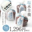 塩水羊羹 5個入 『水羊羹』京都 和菓子 涼菓 羊羹 逸品 こだわり 人気 こしあん