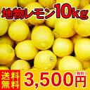 【送料無料】レモンのビタミンCは健康必需品!今年は大変お待たせ致しました。【レ10】地物レモン10kg               3,500円(税別)【全国どこでも送料無料】【smtb-KD】