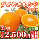 【Fダ5】【愛媛県産】ダイヤオレンジ5kg(大谷伊予柑)(家庭用・大小サイズ込)【全国どこでも送料無料】