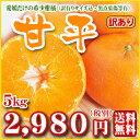 【W甘平5】【愛媛県産】甘平5kg(ワケあり・家庭用・サイズ込み)愛媛の希少柑橘皮が薄く果肉がぎっしり詰まった甘いみかんです。【全国どこでも送料無料】