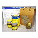 ショッピングMAGICIAN PAINTmagician マジシャンカラーベーシック 水性特殊塗料 ゴールド 700mlセット (255000003)