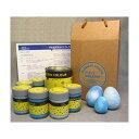 ショッピングMAGICIAN PAINTmagician マジシャンカラーアドヴァンスト 水性特殊塗料 空 1100mlセット (255000009)