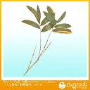 タカショー グリーンデコ 和風クマザサリーフ(人工植物/観葉植物) L50cm GN-13