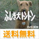 DVD>TVドラマ>日本>コメディー商品ページ。レビューが多い順(価格帯指定なし)第3位
