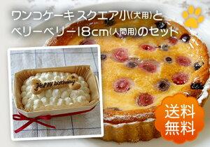 ワンコ(犬用)ケーキ(スクエア小)とベリーベリー(人間用)のセット(送料無料) 手作り 無添加 誕生日 一緒に食べられます 犬用 ケーキ 誕生日 プレゼント ごはん ごちそう メッセージ
