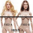【VeryCool】1:6 Scale Female Body Version 3.0 FX03-A or FX03-B 1/6スケール 女性ボディ素体