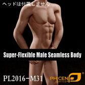 【Phicen】male seamless body PL2016-M31 ファイセン 1/6スケール シームレス男性ボディ(ヘッドなし)