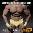 【Phicen】PL2016-M34 male super flexible seamless body with metal skeleton ファイセン 1/6スケール シームレス男性ボディ(ヘッドなし)