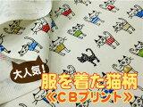 服を着た猫 柄コットンプリント【 生地 布 猫 ねこ 】