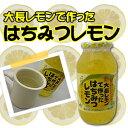 大長レモンで作ったはちみつレモン980g1個化粧箱入