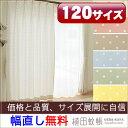 【オーダー商品】ドレープカーテン(水玉柄)幅〜150cm-丈205〜244cm 1枚