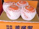 木戸さんの荒尾ジャンボ新高梨(荒尾梨)(7.5kg箱9玉入り)お届けは10月中旬頃からの順次の発送予定です。