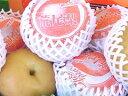 木戸さんの荒尾ジャンボ新高梨(荒尾梨)(4kg箱3玉入りお届けは10月中旬頃からの順次の発送予定です。