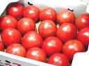 熊本のトマト(フルーツトマト)(S~2Lサイズ)ご予約承り中