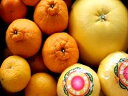 【訳あり】熊本の柑橘詰め合わせ【送料無料】晩白柚入りご予約承り中
