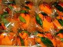 熊本産デコポン15・18玉入り葉つき貯蔵袋入りご予約承り中