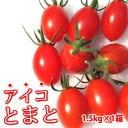 アイコトマト1.5kg 熊本産塩トマト