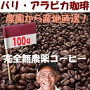 【売れ筋】【オススメ】100g(浅煎)バリ・アラビカ コーヒー豆 バリコーヒー豆 焙煎珈琲 焙煎豆 自家焙煎