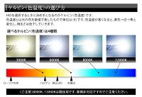 遂に登場!!プロショップ専用HIDコンバージョンキットH4切替タイプ