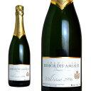 シャンパン デボルド・アミオー プルミエ・クリュ ブラン・ド・ノワール ブリュット ミレジム 1996年 750ml (シャンパーニュ 白 箱なし)