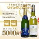 お中元 お歳暮の贈り物に ギフトセット シャンパン&白ワイン 5000円セットC (箱 ラッピング のし紙無料)