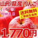 【9月下旬よりお届け開始 早期予約♪】★訳ありサンふじリンゴ約5kg(13玉〜20玉前後)♪送料無料!りんご・林檎