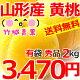 【完売御礼/送料無料】秀品 黄桃 2kg(有袋栽培/約5玉〜8玉入り/キャップ・トレー仕様…