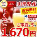 山形県産 りんご サンふじ 5kg (ご家庭用/15玉〜30...