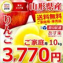 山形県産 りんご サンふじ 10kg (ご家庭用/準秀品/2...