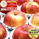 【予約】りんご 葉とらずりんご 10kg (秀品/28玉〜4...