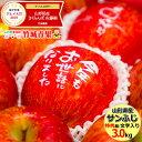 お歳暮 りんご 文字入り サンふじ 3kg (特秀品/8玉〜11玉入り) 山形県産/リンゴ/林檎/蜜入