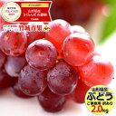 【予約】山形県産 ブドウ デラウェア 2kg(ご家庭用/8房...