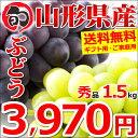 【予約】山形県産 ブドウ ピオーネ&シャインマスカット 1....