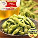 山形県鶴岡産 枝豆 だだちゃ豆 ご家庭用(4kg)
