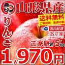 【出荷中】 訳あり りんご サンふじ 5kg (ご家庭用/13玉〜20玉入り/生食可)【山形県産