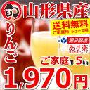 【出荷中】 訳あり りんご サンふじ 5kg (ご家庭用/15