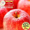 訳あり りんご サンふじ 10kg (ご家庭用/22玉〜46玉入り/生食可)