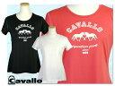【Tシャツ】 Cavallo ショートスリーブTシャツ ティメア (乗馬用品 馬柄Tシャツ)