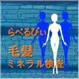 【送料無料】らべるびぃ予防医学研究所「毛髪ミネラ...の商品画像